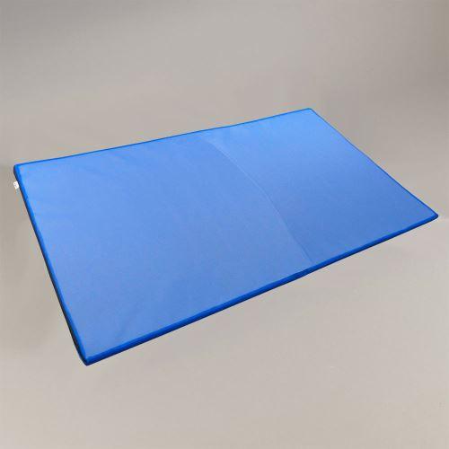 Dezinfekční rohož GASTRO 200 x 120 cm